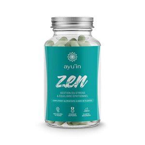 Zen - système nerveux
